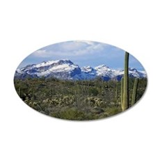 Snow in the Superstition Wil 35x21 Oval Wall Decal