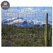 Snow in the Superstition Wilderness Puzzle