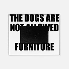 Dogs Rule Picture Frame