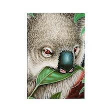 Koala Munching Panel Print Rectangle Magnet