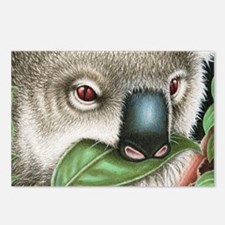Koala Munching Coin Purse Postcards (Package of 8)