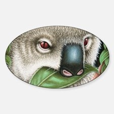 Koala Munching Coin Purse Decal
