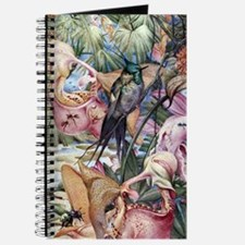 Edward Julius Detmold Tropical Birds Journal