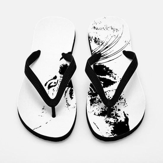 PookieFeh14x14TRANS-c Flip Flops