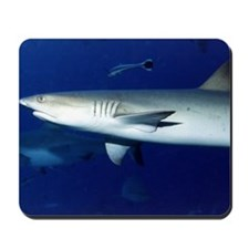 Shark! Mousepad