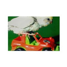 RACER THE PARAKEET Rectangle Magnet