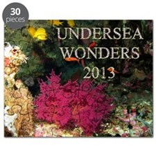 Cover 2013 Undersea Wonders Cal Puzzle