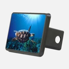 A turtle in the sun Hitch Cover