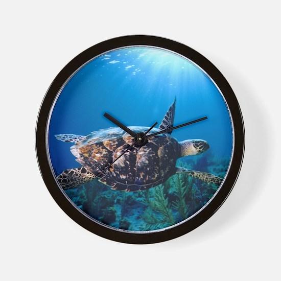 A turtle in the sun Wall Clock