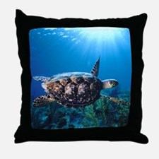 A turtle in the sun Throw Pillow