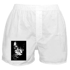 Pookieipadfolio Boxer Shorts