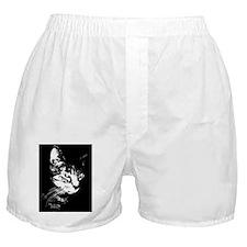 Pookieipadcase Boxer Shorts