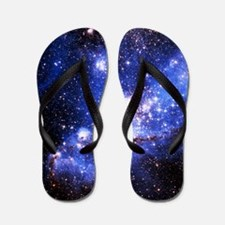 Magellanic Clouds (High Res) Flip Flops