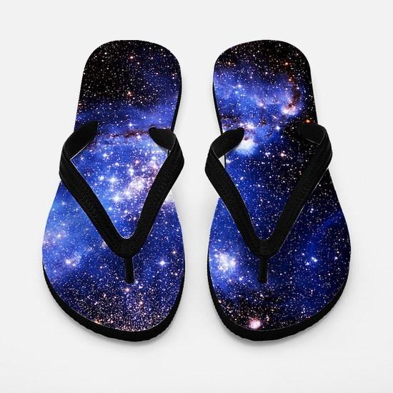 Magellanic Clouds (High Res) Flip Flops
