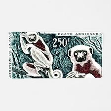 1961 Madagascar Lemur White Aluminum License Plate