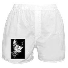 PookieRectCoctailPlate Boxer Shorts