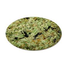 Cannabis II Wall Decal