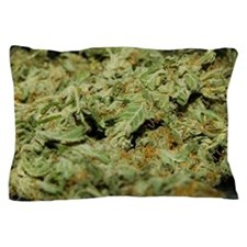 Cannabis II Pillow Case