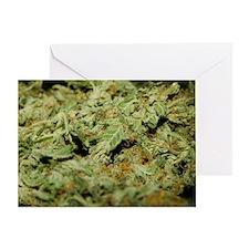 Cannabis II Greeting Card