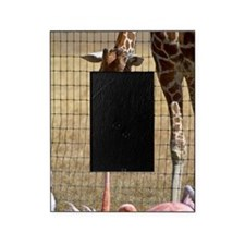 Giraffe and Flamingo Picture Frame