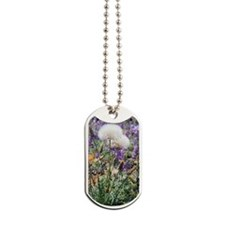 Dandelions in Lupines Dog Tags