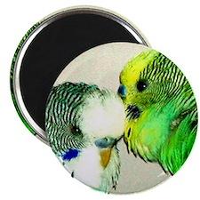 Parakeet whisperer, green Magnet