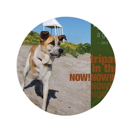 "Tripawds Live in the Now 3.5"" Button"