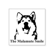 "The Malamute Smile Square Sticker 3"" x 3"""