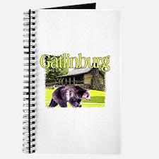 Gatlinburg Bear Journal