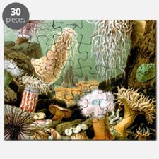 Giacomo Merculiano Sea Anemones Puzzle