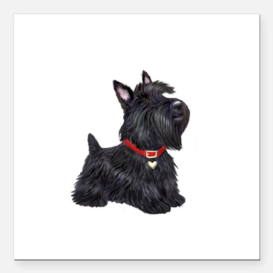 "Scottish Terrier #2 Square Car Magnet 3"" x 3"""