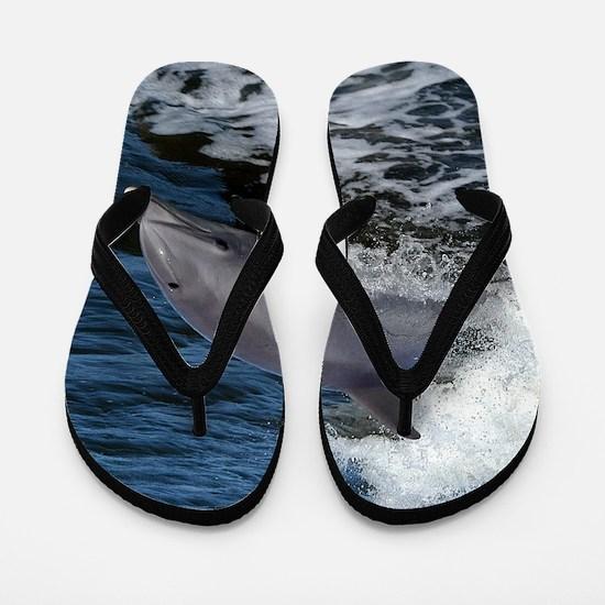 Bottlenose dolphin Flip Flops