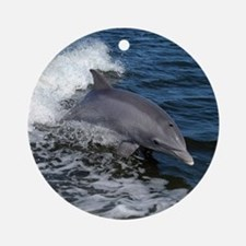 Bottlenose dolphin Round Ornament