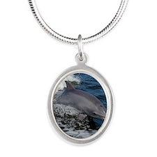 Bottlenose dolphin Silver Oval Necklace