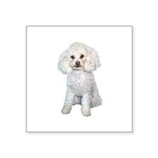 "Poodle - Min (W) Square Sticker 3"" x 3"""
