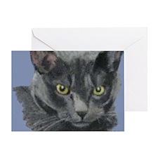 American Shorthair Gray Cat Greeting Card