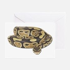 Ball Python Photo Greeting Cards (Pk of 10)
