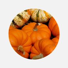 """Pumpkins in a basket 3.5"""" Button"""