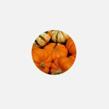 Pumpkins in a basket Mini Button