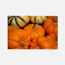 Pumpkins in a basket Rectangle Magnet