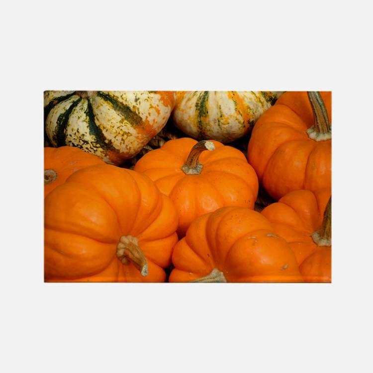 Pumpkins in a basket Rectangle Magnet