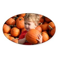 Wyatt in the pumpkin patch Decal
