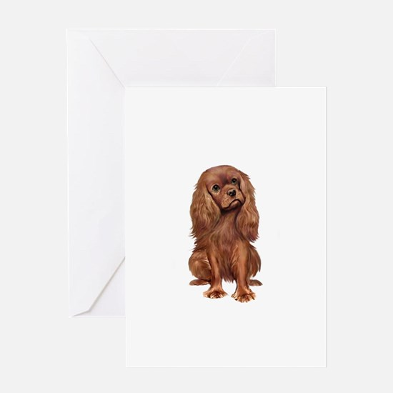 Ruby Cavalier 1 Greeting Card