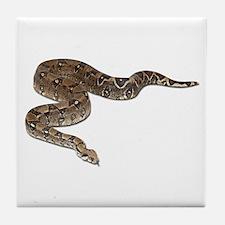 Boa Constrictor Photo Tile Coaster