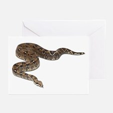 Boa Constrictor Photo Greeting Cards (Pk of 10