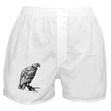 Condor Bird T-Shirt Boxer Shorts