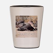 Hard Day Hippos Shot Glass