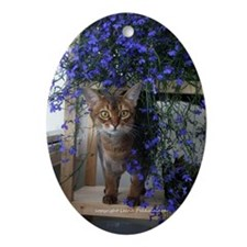 Flower Cat Oval Ornament