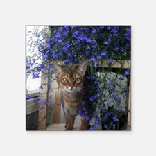 "Flower Cat Square Sticker 3"" x 3"""