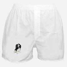 Cavalier (tri color) Boxer Shorts